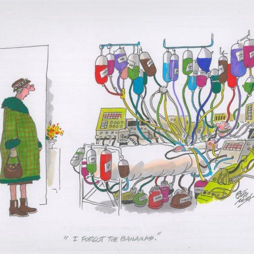 I forgot the bananas - an original cartoon by Bill Tidy MBE